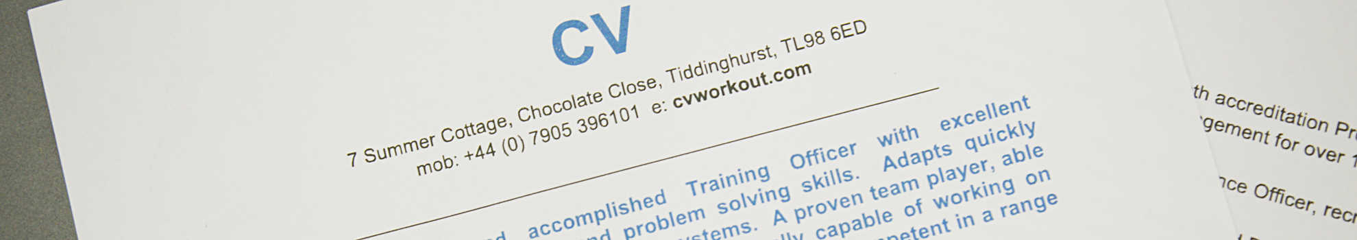 Bespoke CV Advice | CV Workout